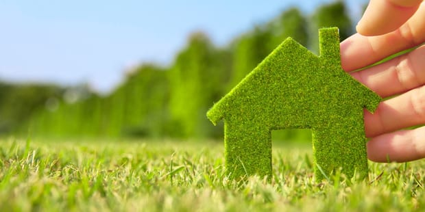 chemical free home, Want a Chemical-Free Home?